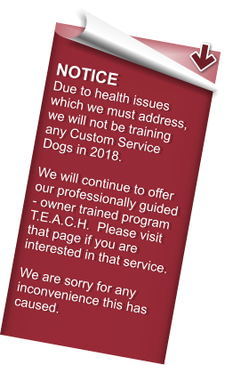 NOTICE Due to health issues which we must address, we will not be training any Custom Service Dogs in 2018.  We will continue to offer our professionally guided - owner trained program T.E.A.C.H.  Please visit that page if you are interested in that service.  We are sorry for any inconvenience this has caused.